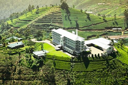 Heritance Tea Factory- Aerial